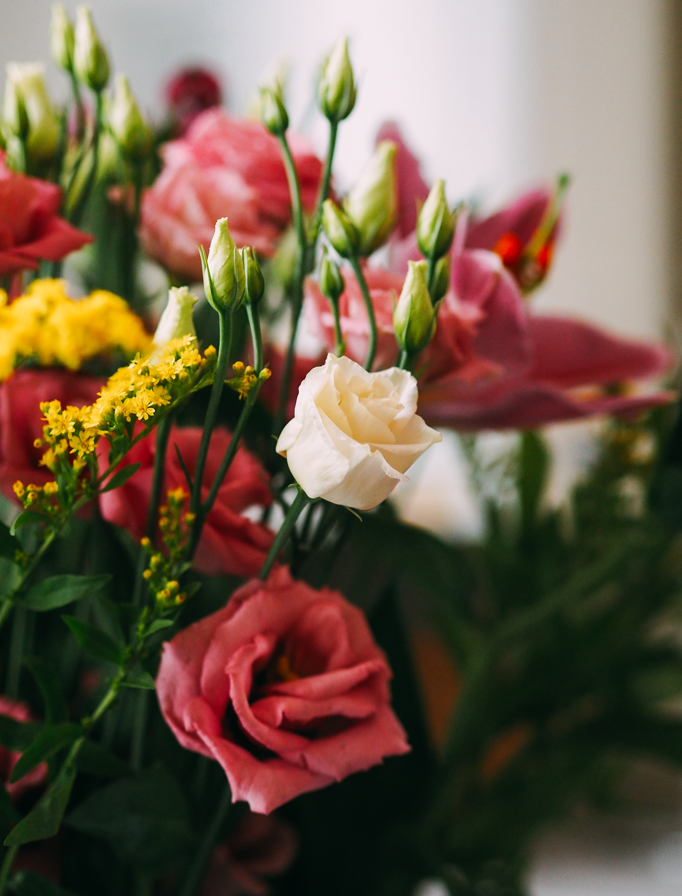 Homely Touches With Freddies Flowers Weekly Subscription Service